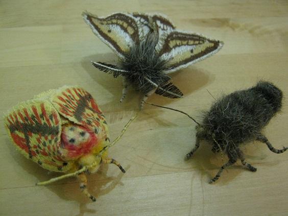 第5回 - mozo mozo - 虫・蟲 展 たまごの工房企画展 その6  _e0134502_17591183.jpg