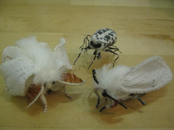 第5回 - mozo mozo - 虫・蟲 展 たまごの工房企画展 その6  _e0134502_1865427.jpg