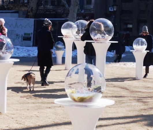 NYの公園にガラスの球体パブリック・アート作品 Gazing Globes_b0007805_1412583.jpg