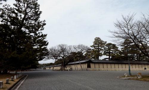 梅が始まった 京都御苑_e0048413_21271530.jpg