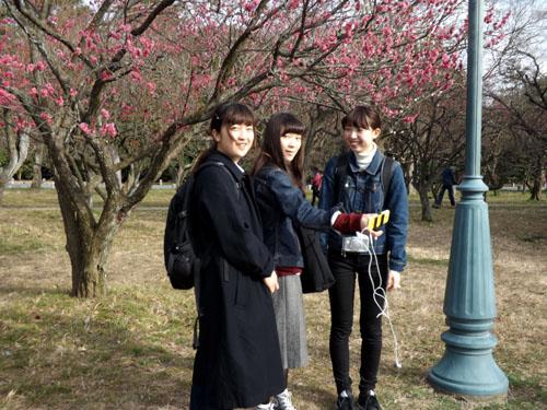 梅が始まった 京都御苑_e0048413_2128469.jpg