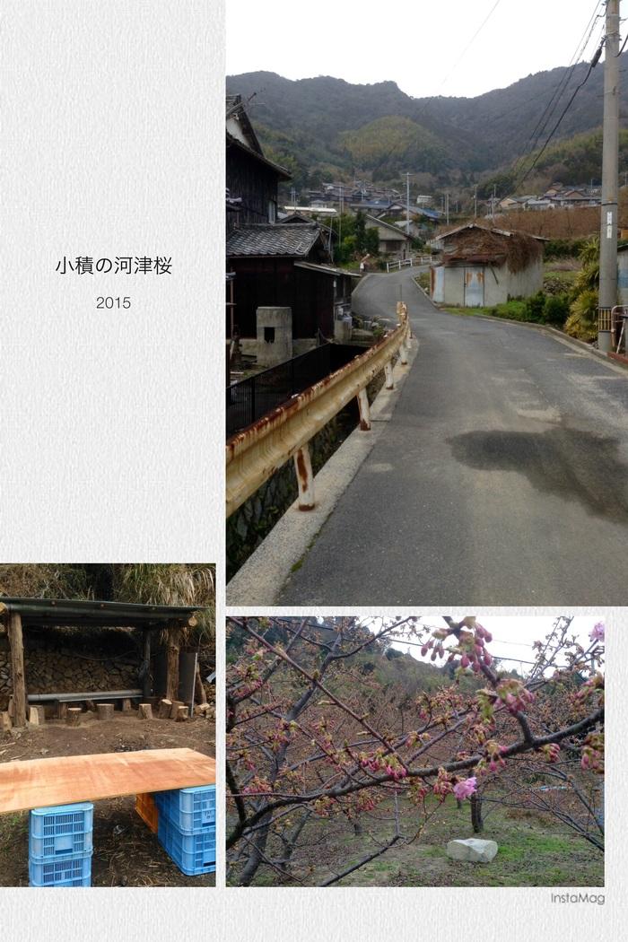 f0183846_1284637.jpg