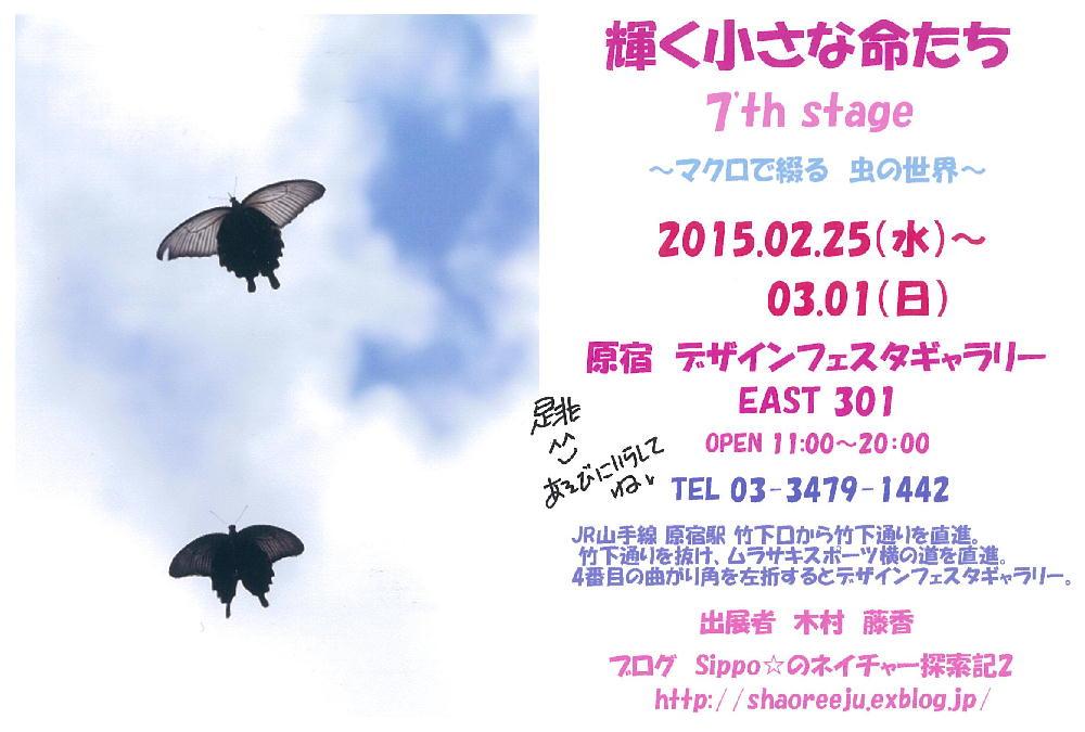 Sippo☆さんの展示会案内_a0146869_22495444.jpg