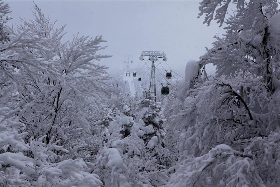 山形市蔵王 「樹氷」_d0106628_04273284.jpg