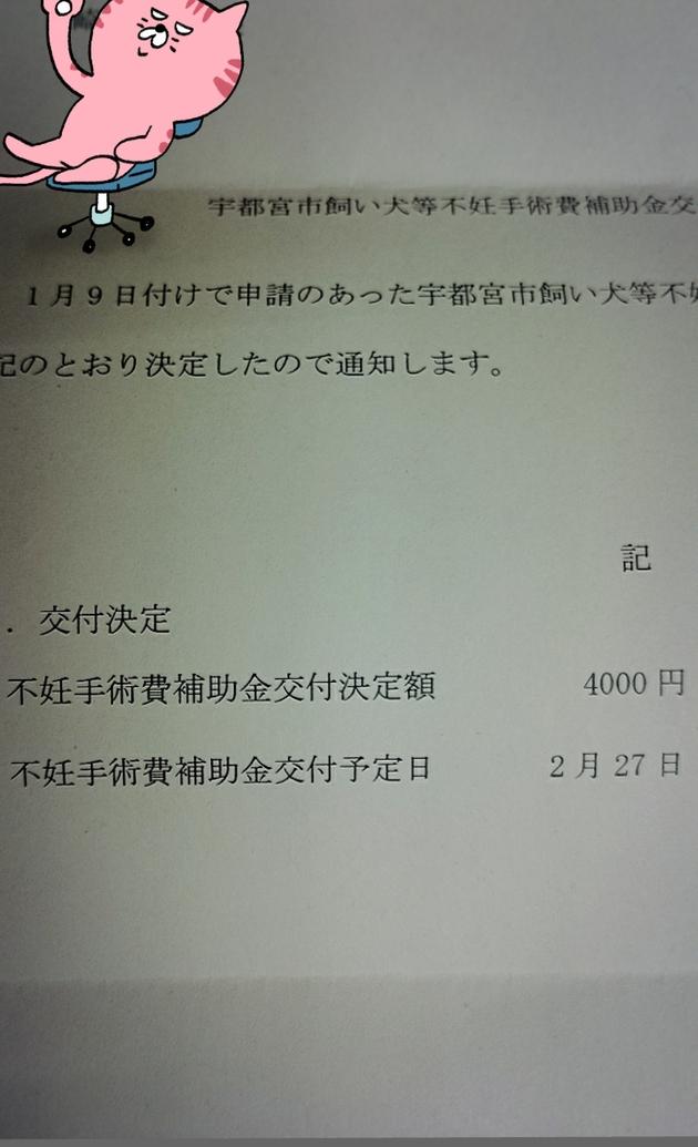 b0153550_22432816.jpg