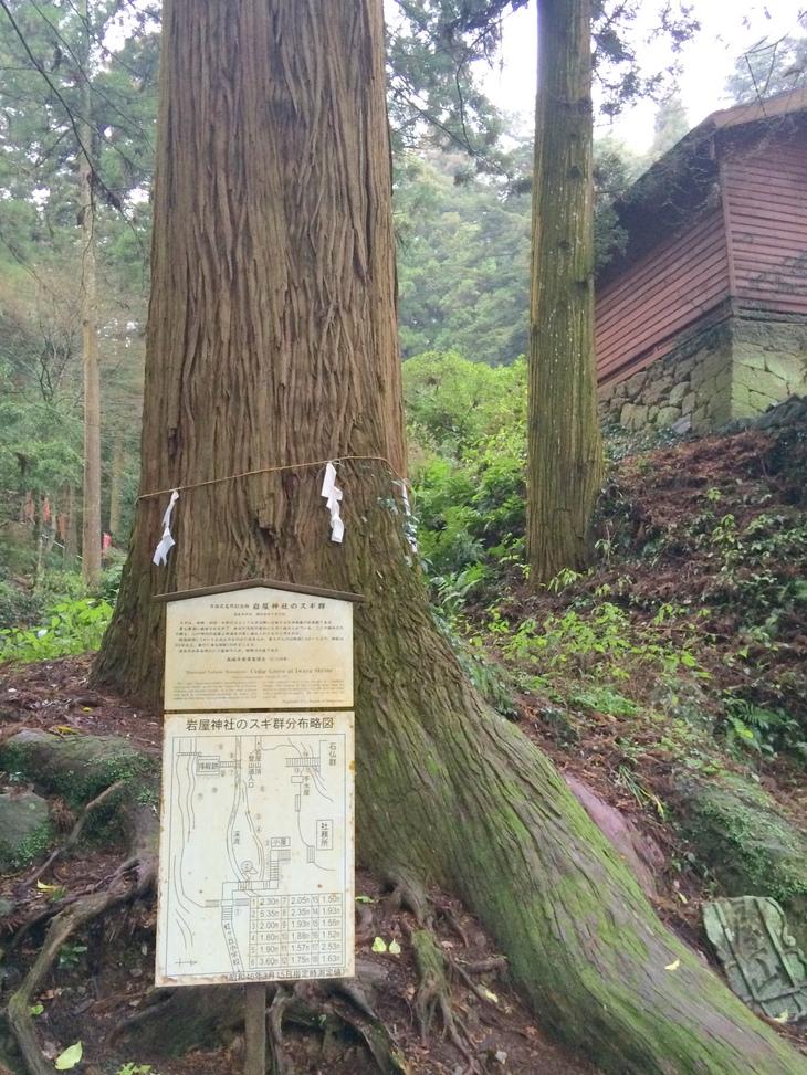 長崎市の岩屋山へ_b0161750_1804486.jpg