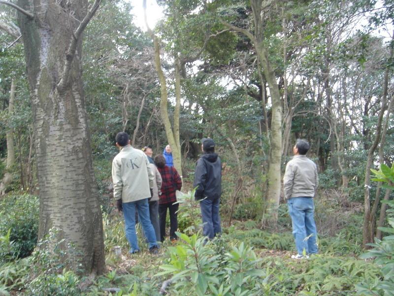 平成16年度うみべの森を育てる会第4回定期総会_c0108460_21573698.jpg
