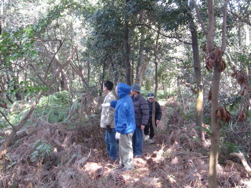 平成16年度うみべの森を育てる会第4回定期総会_c0108460_21573781.jpg