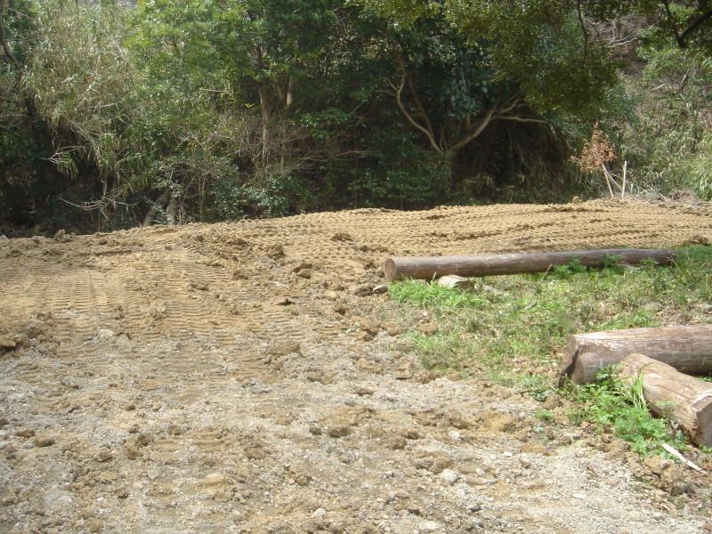 ケロケロ湿地第4池 & 護岸工事完成  in  うみべの森_c0108460_22453620.jpg