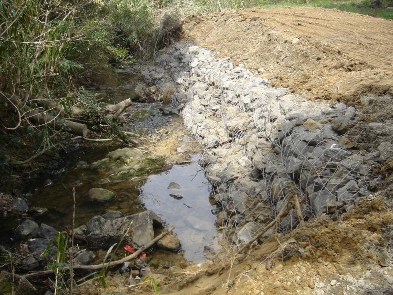 ケロケロ湿地第4池 & 護岸工事完成  in  うみべの森_c0108460_22453756.jpg