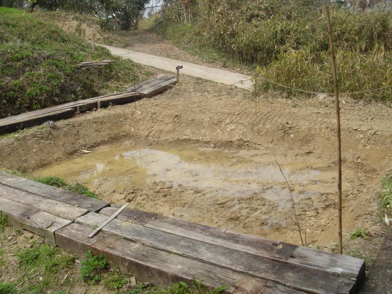 ケロケロ湿地第4池 & 護岸工事完成  in  うみべの森_c0108460_22453849.jpg