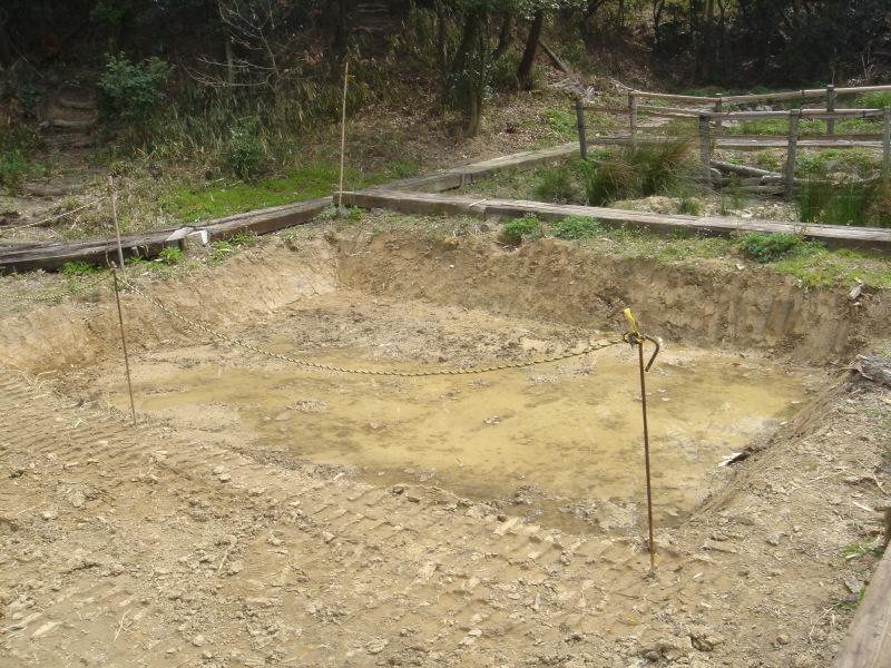 ケロケロ湿地第4池 & 護岸工事完成  in  うみべの森_c0108460_22453970.jpg