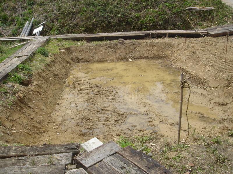 ケロケロ湿地第4池 & 護岸工事完成  in  うみべの森_c0108460_22453982.jpg