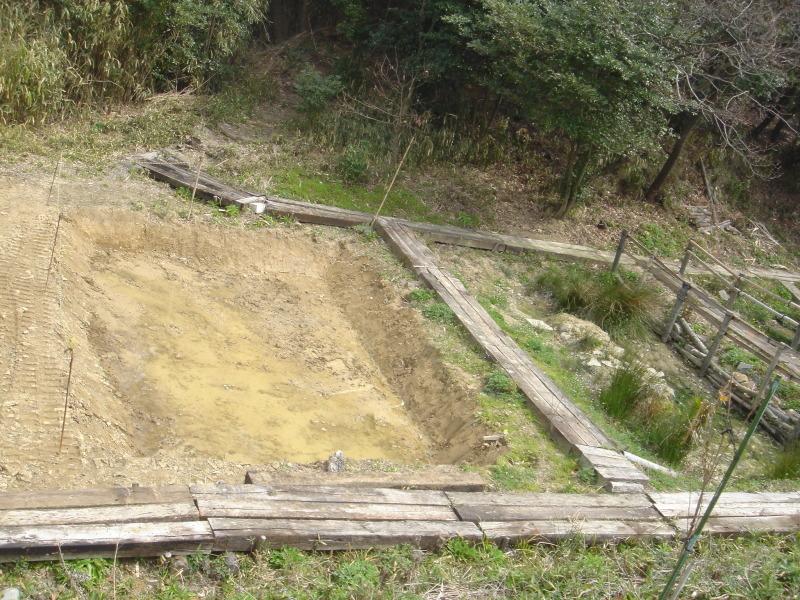 ケロケロ湿地第4池 & 護岸工事完成  in  うみべの森_c0108460_22454024.jpg