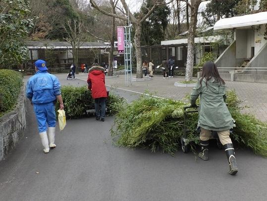 竹とゾウさん_e0272869_00092233.jpg