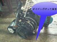 a0108380_1548535.jpg