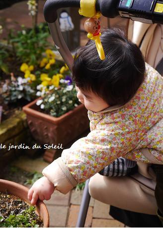 春を待ちながら・・・♪_c0098807_15331023.jpg