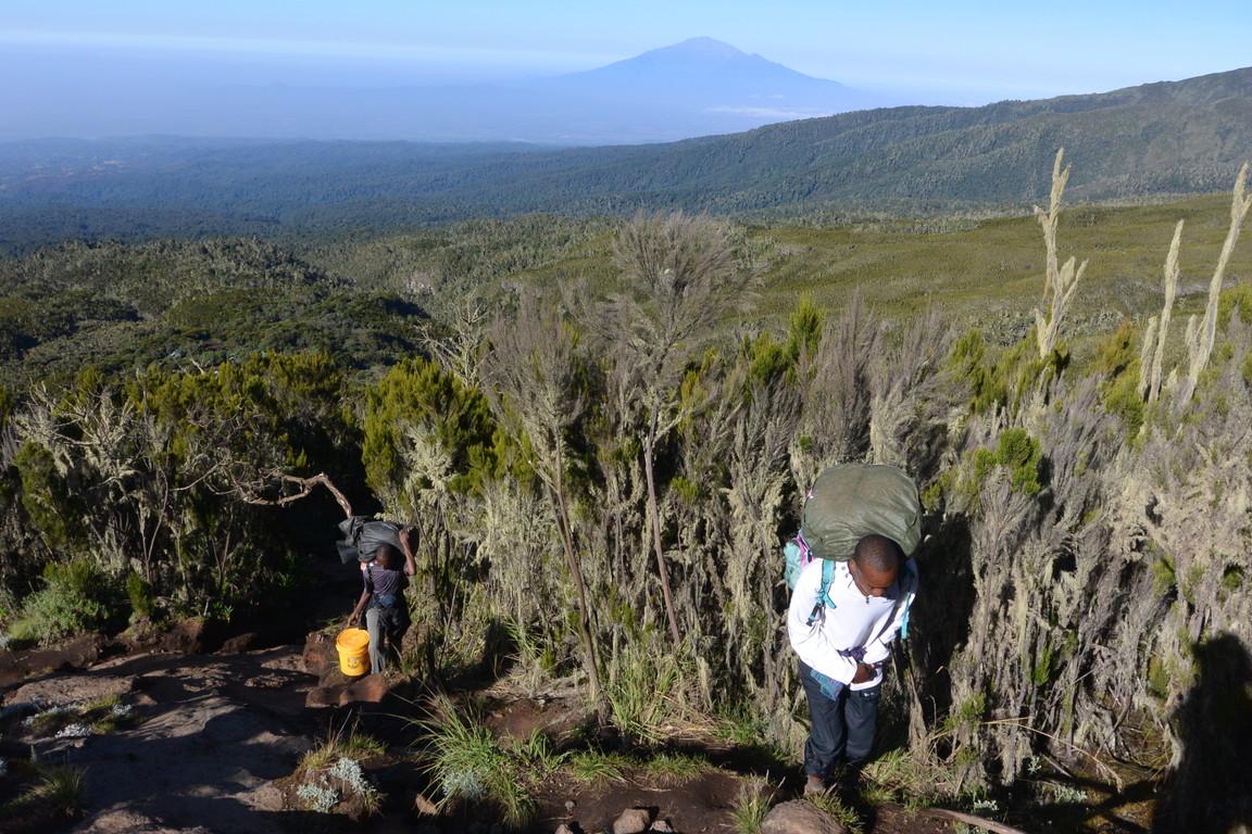 """2015年2月「アフリカの大地に聳える白き峰、キリマンジャロ」 February 2015 \""""Kilimanjaro, Africa\""""_c0219616_1559375.jpg"""