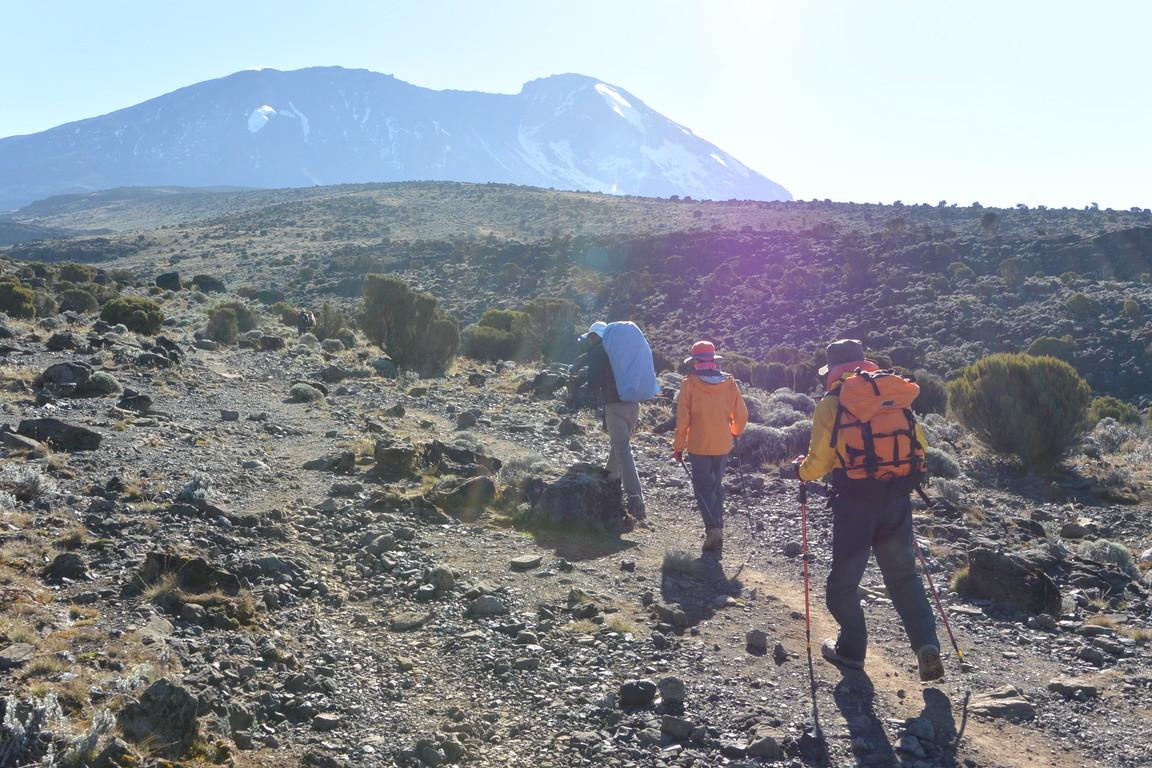 """2015年2月「アフリカの大地に聳える白き峰、キリマンジャロ」 February 2015 \""""Kilimanjaro, Africa\""""_c0219616_21262031.jpg"""