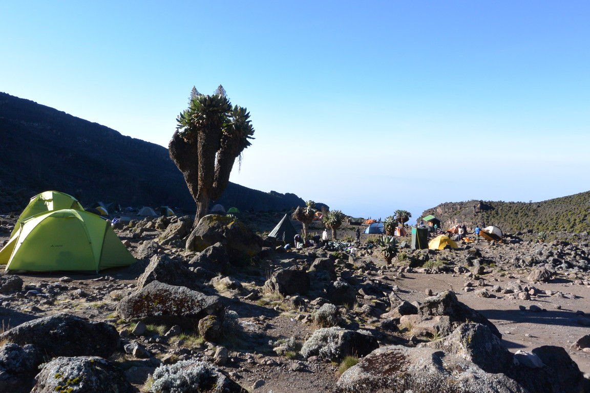 """2015年2月「アフリカの大地に聳える白き峰、キリマンジャロ」 February 2015 \""""Kilimanjaro, Africa\""""_c0219616_21571213.jpg"""
