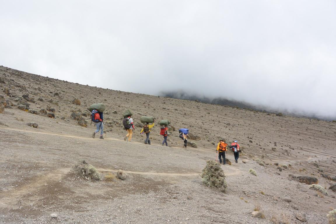 """2015年2月「アフリカの大地に聳える白き峰、キリマンジャロ」 February 2015 \""""Kilimanjaro, Africa\""""_c0219616_22314517.jpg"""