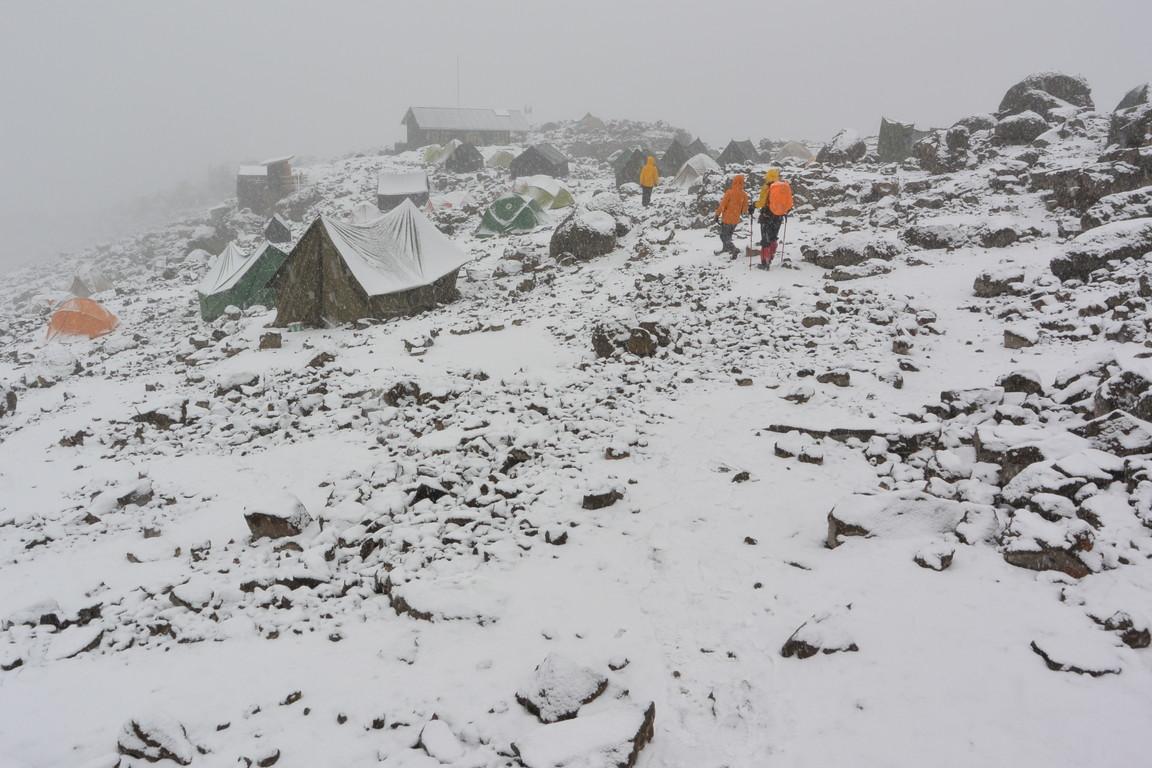 """2015年2月「アフリカの大地に聳える白き峰、キリマンジャロ」 February 2015 \""""Kilimanjaro, Africa\""""_c0219616_22542051.jpg"""