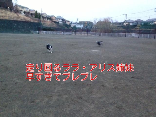 a0232619_10542136.jpg