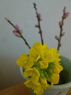 thank you 桃と菜の花とBGM♪_a0165160_12505217.jpg