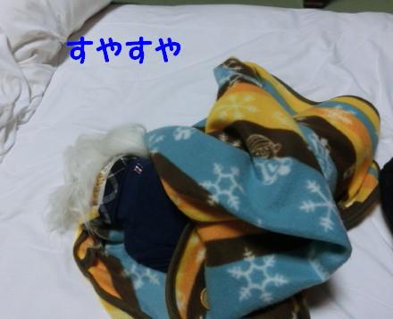 b0193480_1412264.jpg