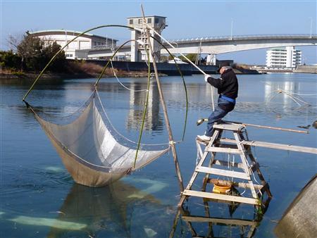 素魚(シロウオ)漁のシーズン到来!_e0227782_0363696.jpg