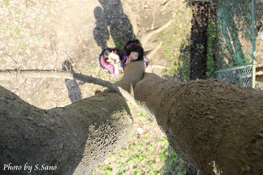 大きなエノキの木の下で_b0348205_00531956.jpg