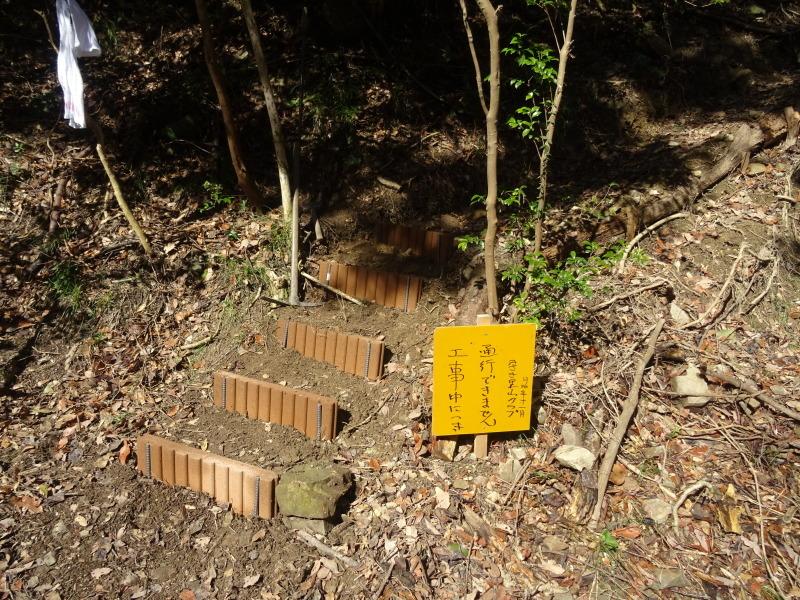 広場をきれいにしました  in  孝子の森     by     (TATE-misaki)_c0108460_20581443.jpg