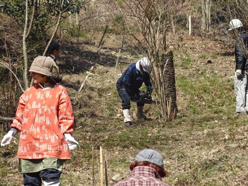 広場をきれいにしました  in  孝子の森     by     (TATE-misaki)_c0108460_21051628.jpg