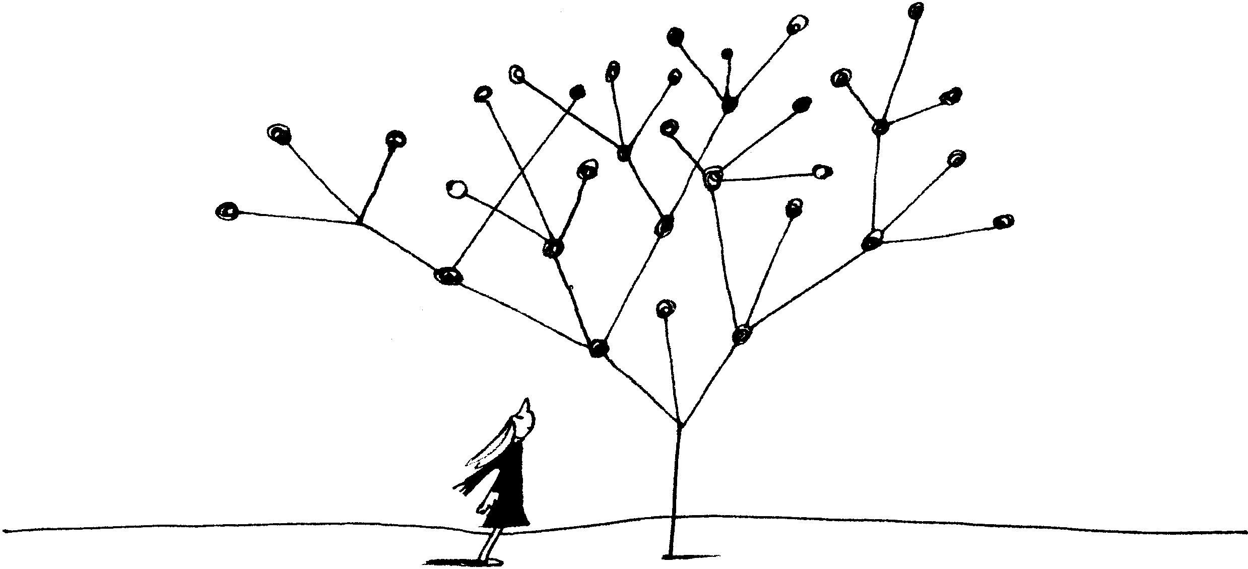 『数学の言葉で世界を見たら』_c0194469_1540619.jpg