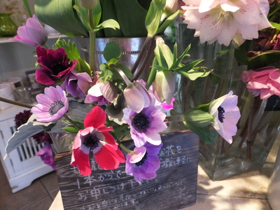 オークリーフ(繊細な春の花と多肉系)_f0049672_18372599.jpg