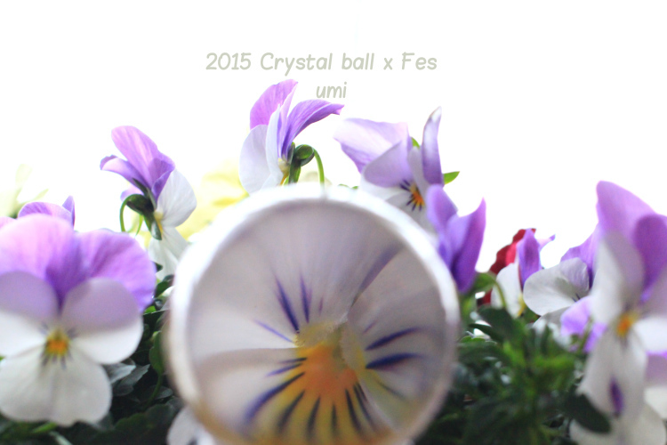 2015 CRYSTAL BALL × FES_b0324291_21215227.jpg