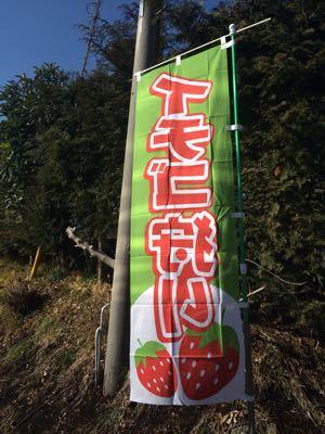 f0340596_2012211.jpg