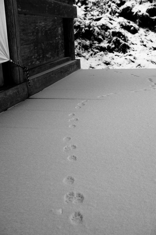 2015京の雪景色@鞍馬 其の二_f0032011_18225737.jpg