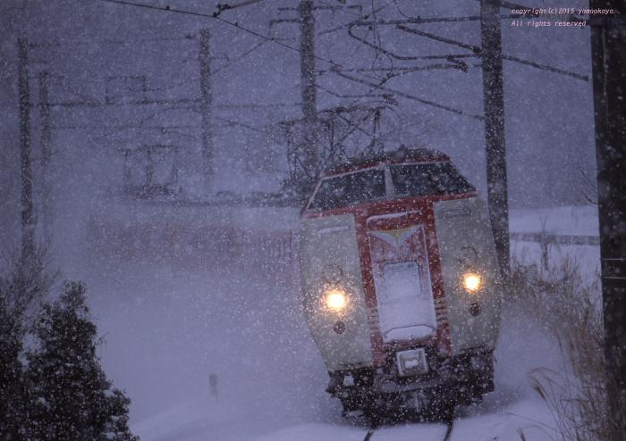 吹雪を駆け抜けて_d0309612_19264093.jpg