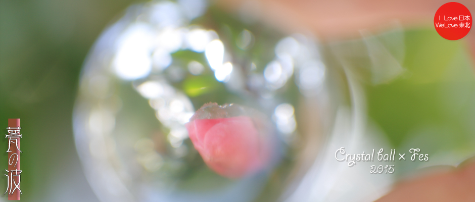 2015 Crystal ball × Fes『春色』(蝋梅&椿)_b0157849_19131497.jpg