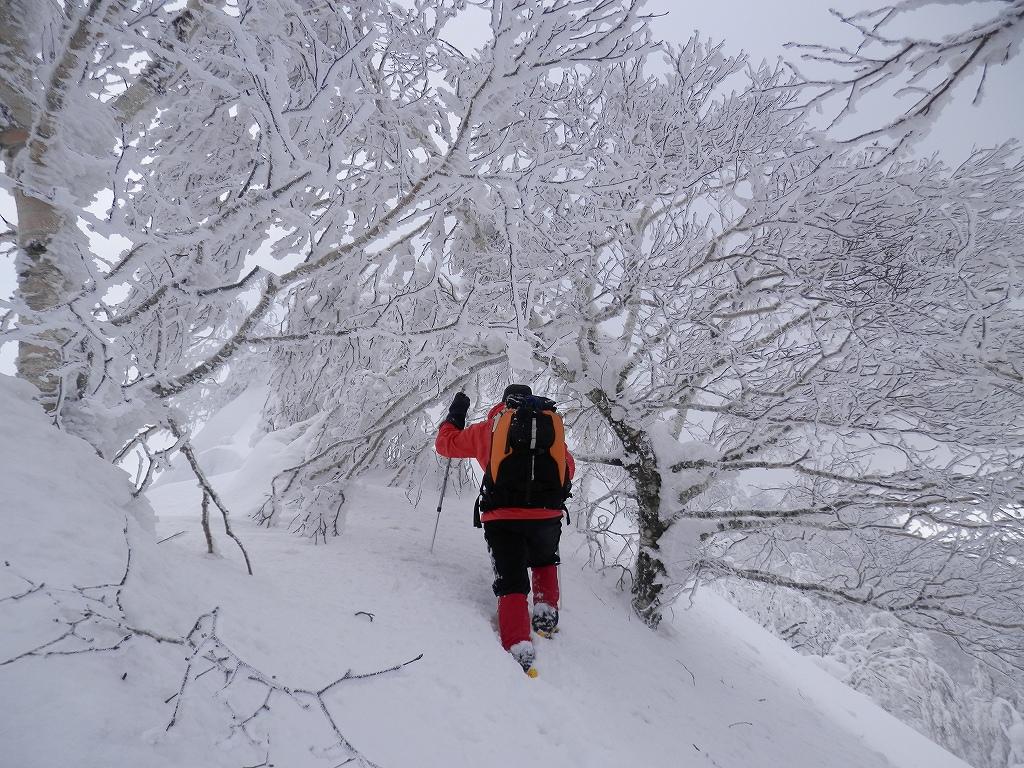 風不死岳、2月26日-同行者からの写真-_f0138096_12512229.jpg