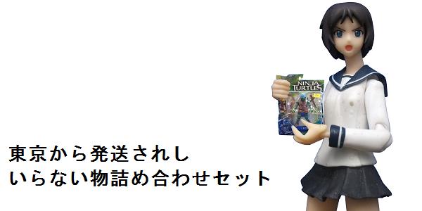 【貰い物レビュー】東京から発送されし『いらない物詰め合わせセット』_f0205396_14414477.png