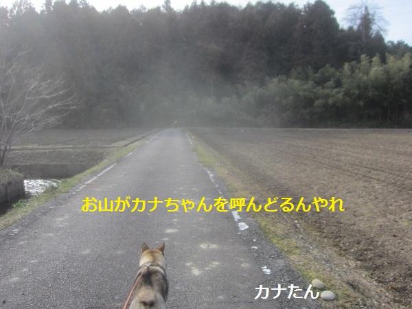 f0143123_10424147.jpg