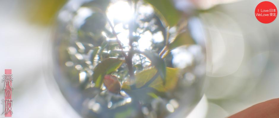 続 : 春色 × クリスタルボール ~蠟梅、椿~_b0157849_23460065.jpg