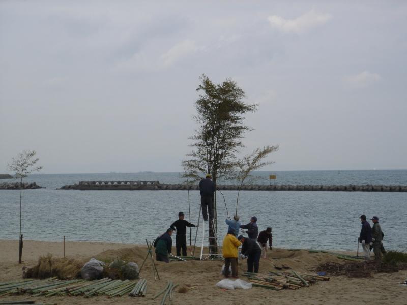 「とんど」組立・・・せんなん里海公園淡輪海水浴場_c0108460_22322633.jpg