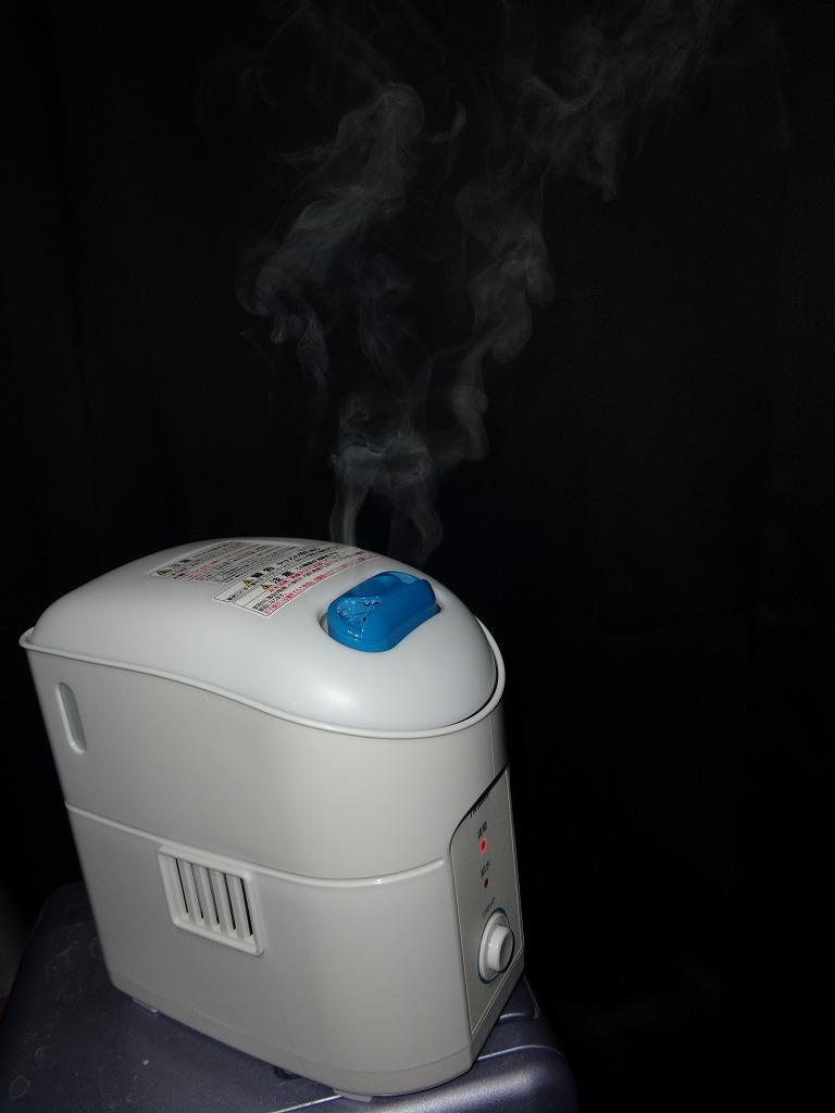 新しい加湿器来た!_d0061678_044377.jpg