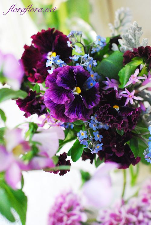 """パンジー\""""フリズルシズル\""""とわすれな草と 3月最初の月曜日 フローラフローラ花のスタジオから_a0115684_21174279.jpg"""