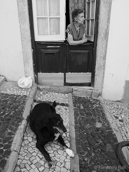 リスボンにて_c0030685_18344667.jpg
