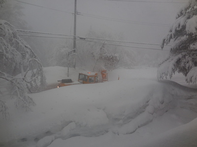 3月2日  月曜   吹雪_f0210811_8134714.jpg