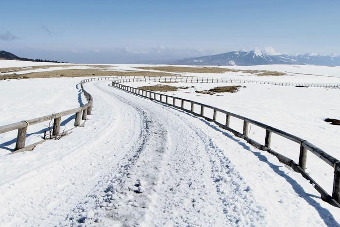 冬の信州 美ヶ原高原の旅 (1)_d0150720_1794159.jpg